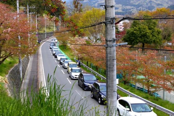 秩父 羊山公園 渋滞