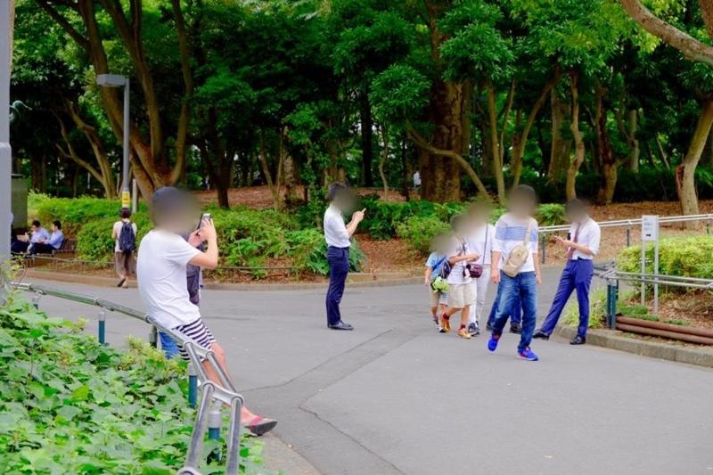 ポケモンGO 新宿中央公園