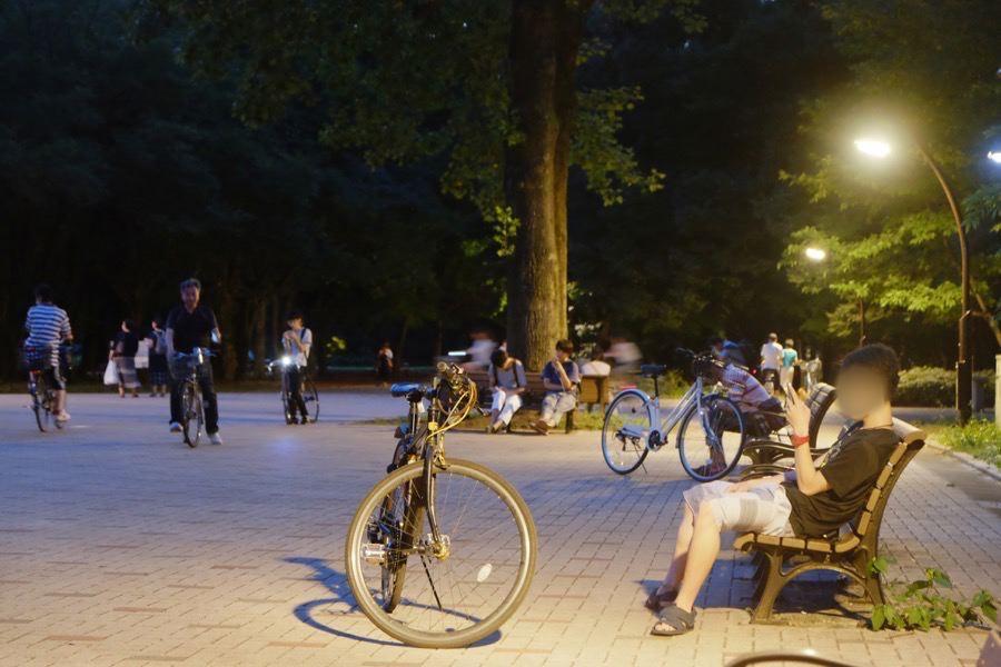 ポケモンGO 光が丘公園 1