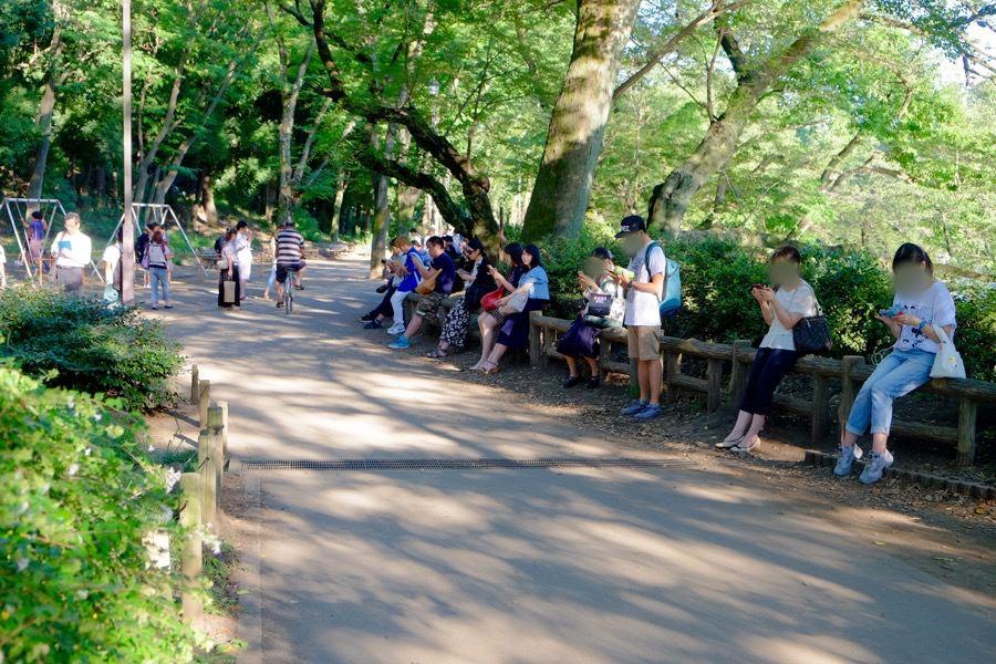 ポケモンGO 井の頭公園 2