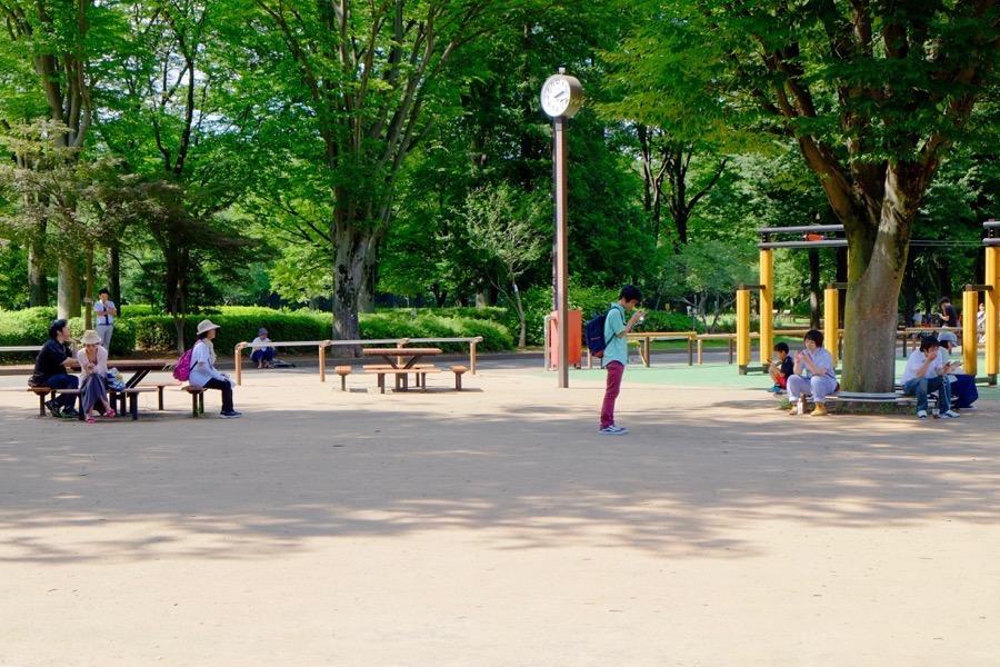 ポケモンGO 小金井公園 2
