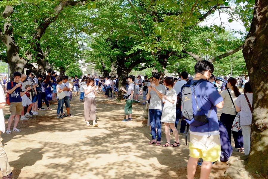 ポケモンGO 錦糸公園 2