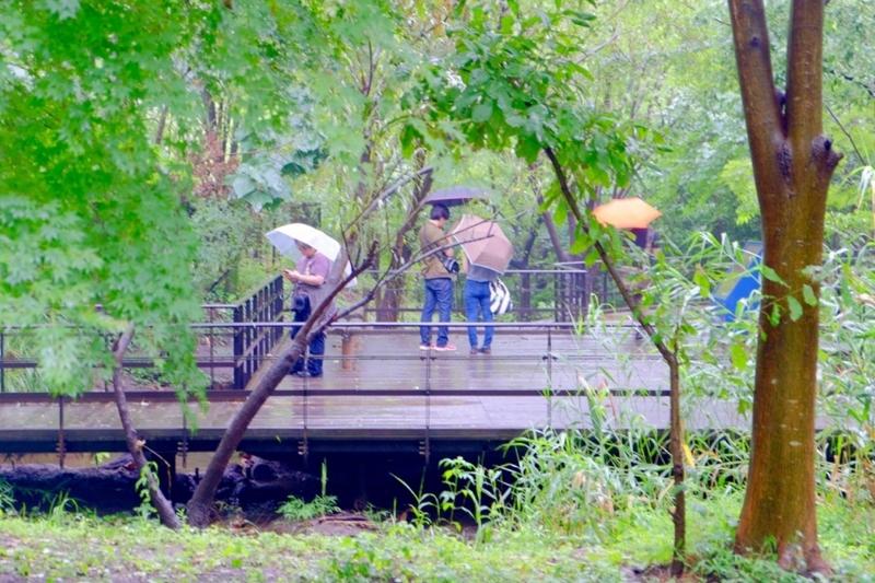 ポケモンGO 赤羽自然観察公園 1