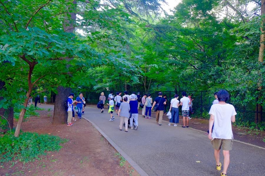 ポケモンGO 江古田の森公園 1