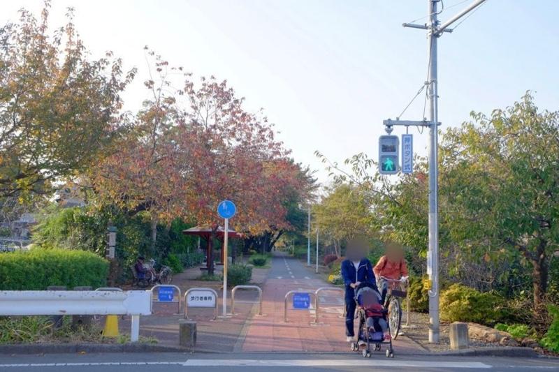 多摩湖自転車道