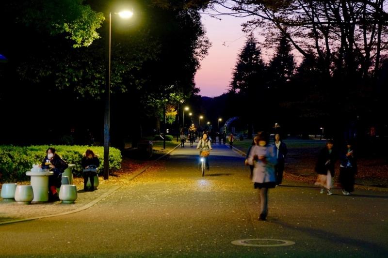 代々木公園 写真