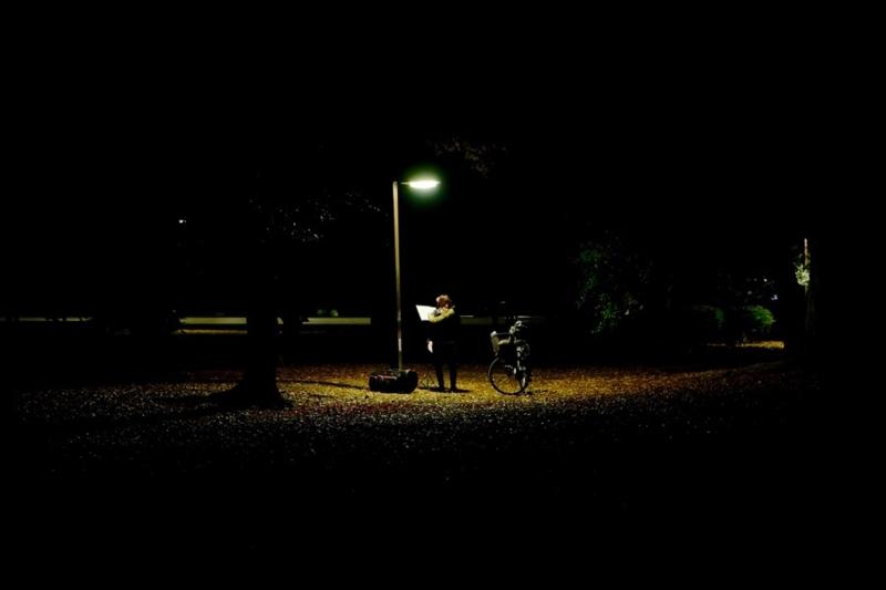 代々木公園 紅葉 写真