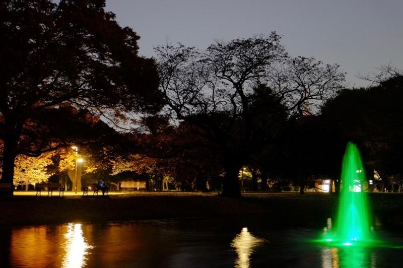 代々木公園 噴水 写真