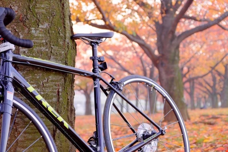 ロードバイク TREK Émonda ALR