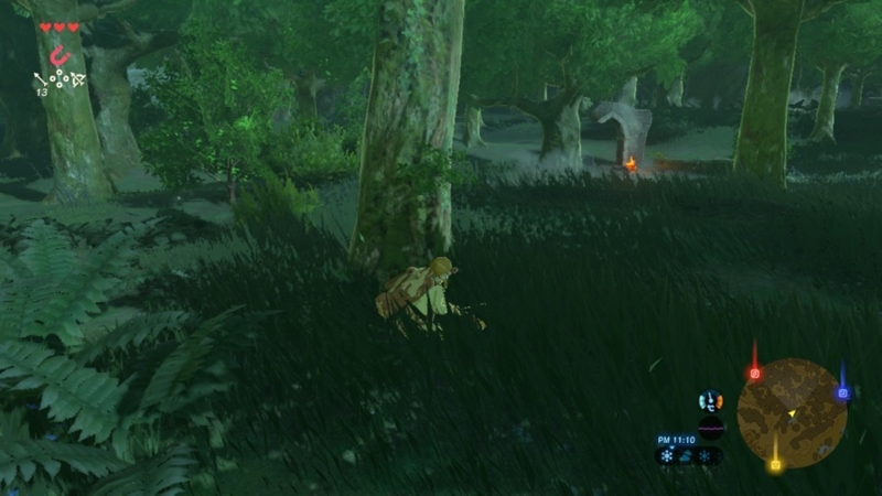 ゼルダの伝説 ブレスオブザワイルド 夜の森