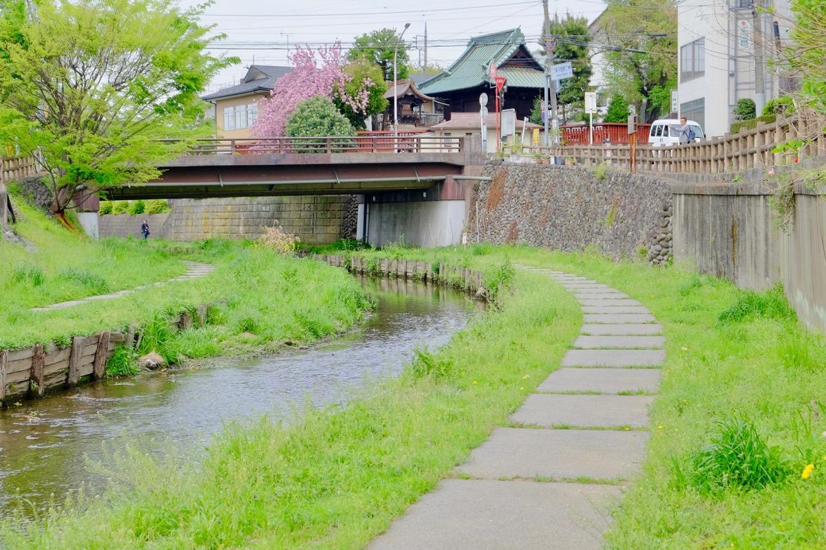 月がきれい アニメ 聖地巡礼 川越 新河岸川2