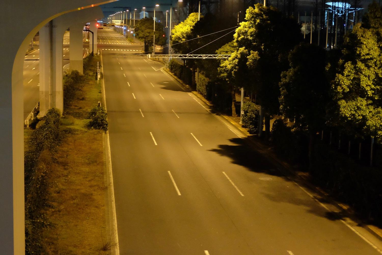 夜の国際展示場前の道路1