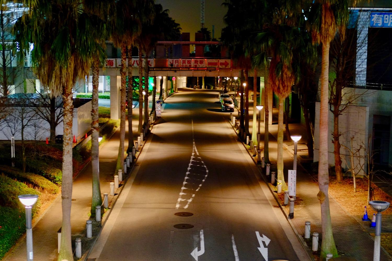 夜の国際展示場前の道路2