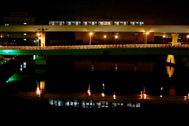 夜の夢の大橋から見える景色1
