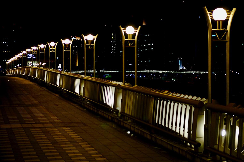 夜の夢の大橋5