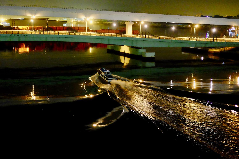 夜の夢の大橋から見える景色3