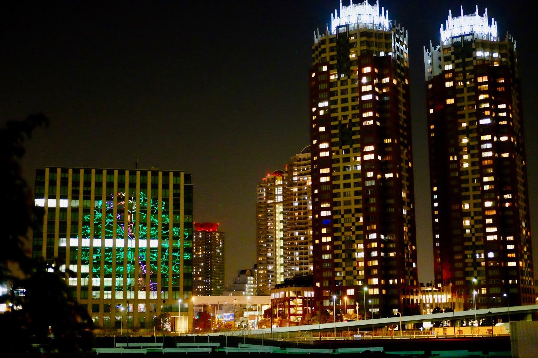 夜の東京テレポート駅付近