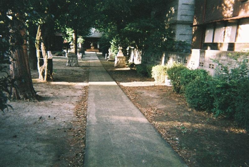 氷川神社(富士見市)の参道