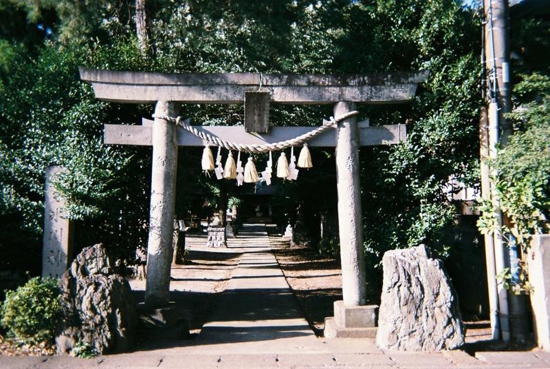 氷川神社(富士見市)の鳥居