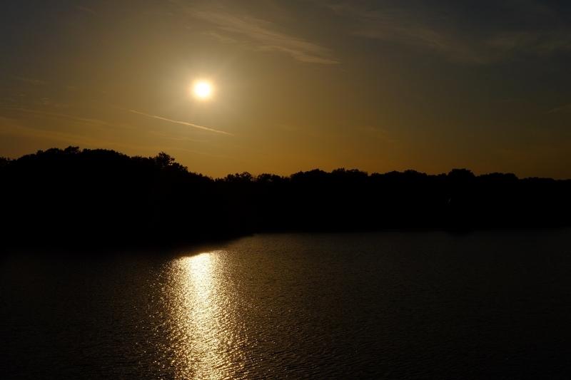 冬の多摩湖5