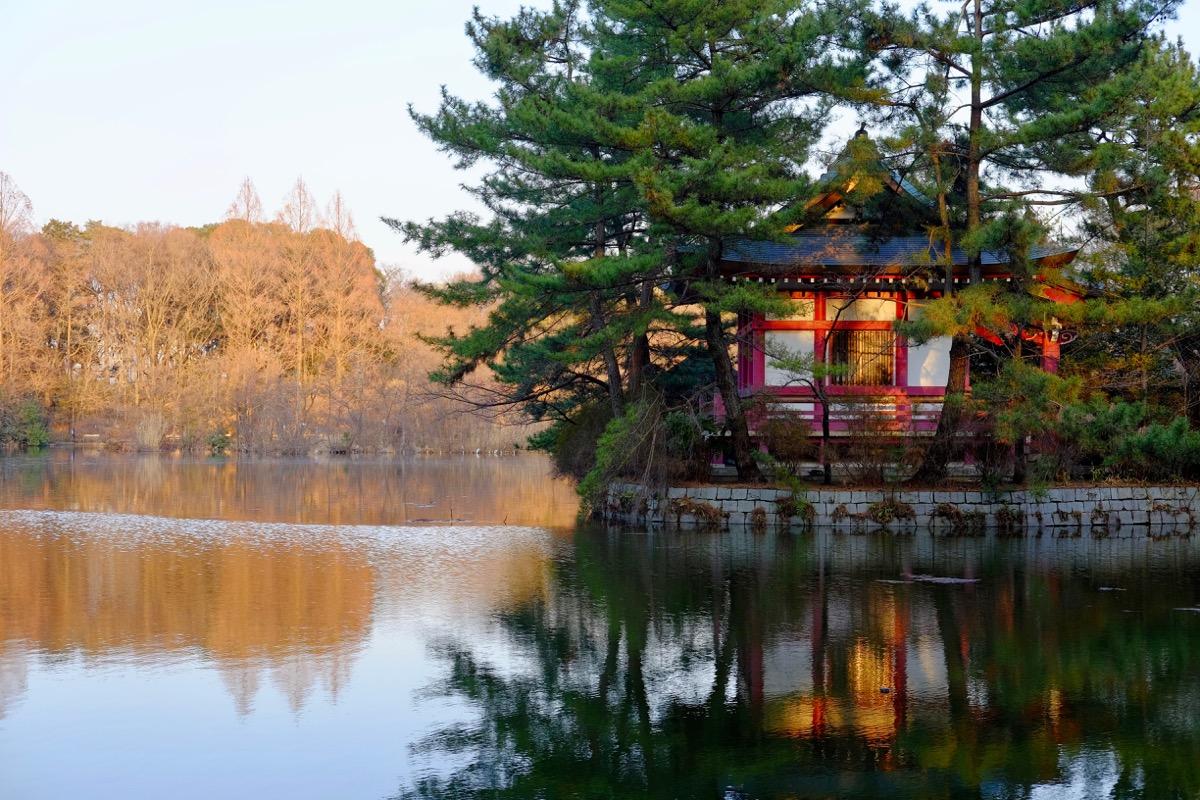 石神井公園・厳島神社1
