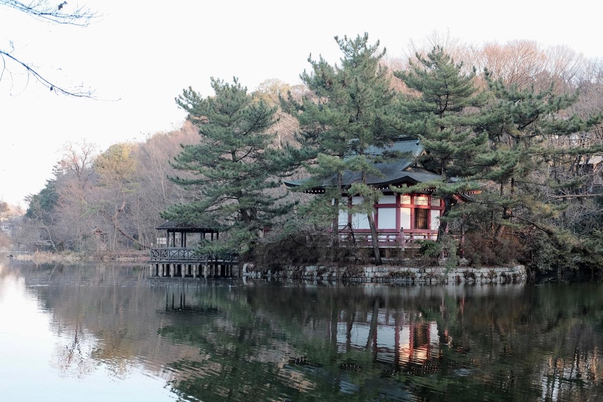 石神井公園・厳島神社3