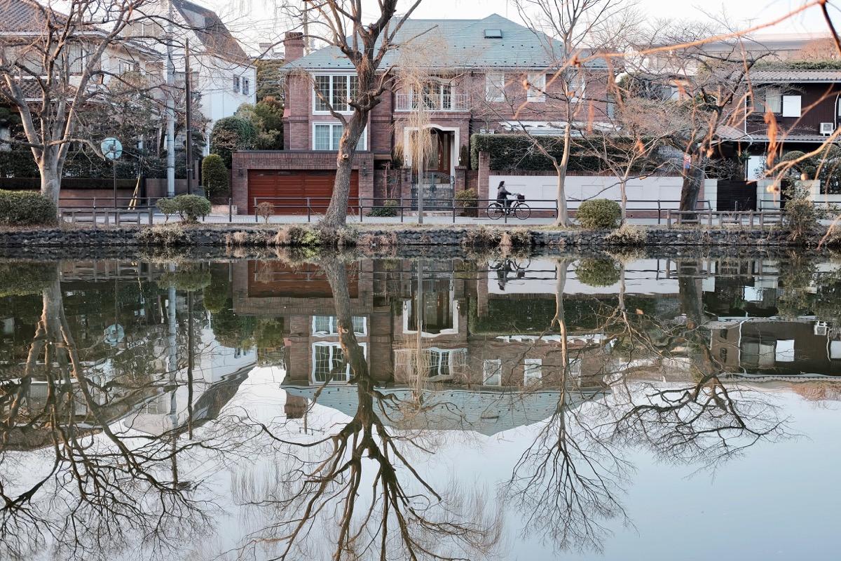 石神井公園・石神井池11