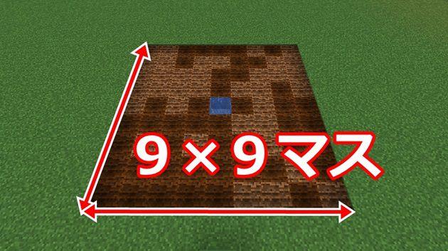 9×9の畑