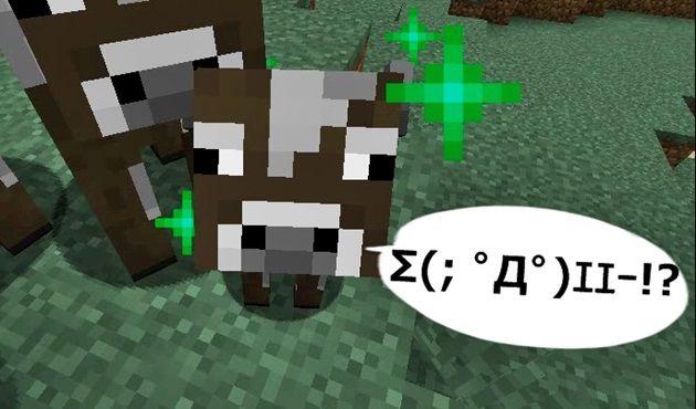 小麦を食べる仔牛