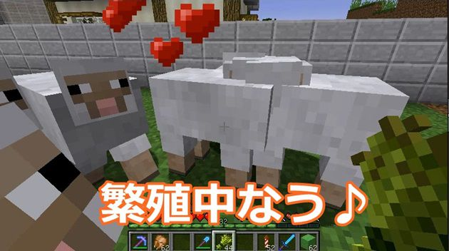 羊の繁殖方法