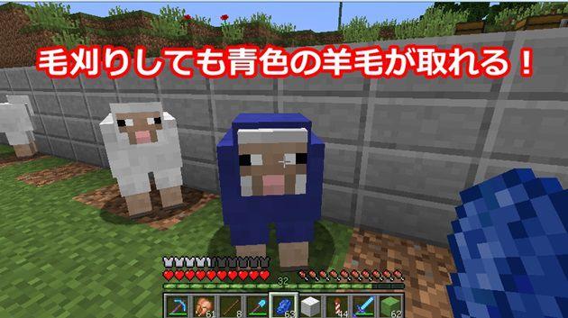 青色の羊n