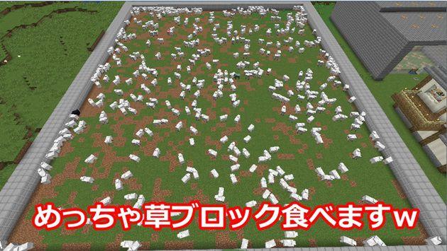、羊は草ブロックの草を食べて、羊毛を成長させている