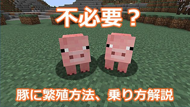 豚さん2匹