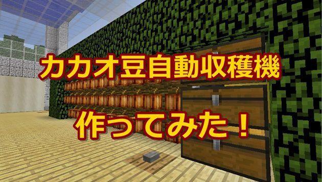 カカオ豆の自動収穫機