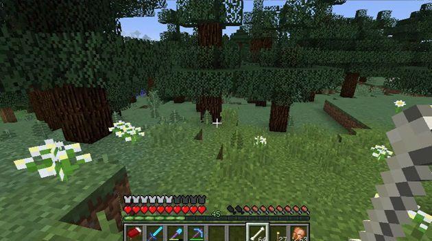 針葉樹林のバイオーム