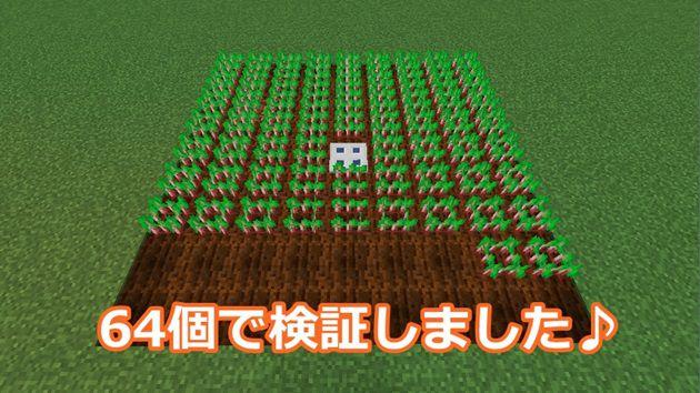 64個で収穫量検証