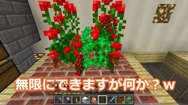 バラの低木で無限
