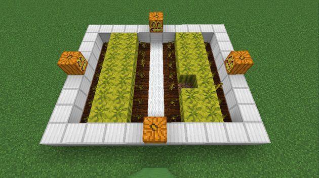 カボチャとスイカの植え方
