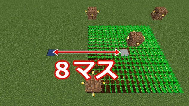 水源から8マス離して畑を作る