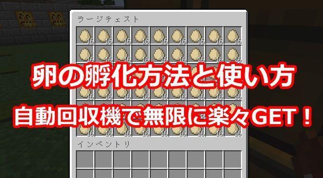卵専用チェスト