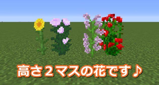 高さ2マスの花