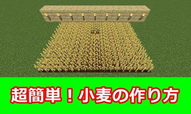 小麦の作り方