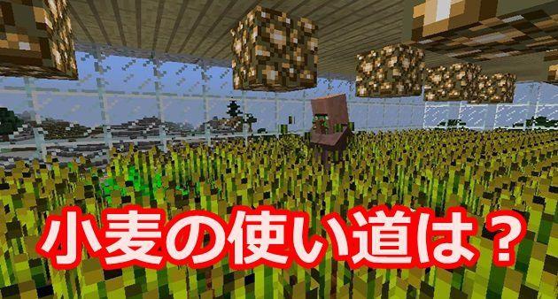 小麦の使い道