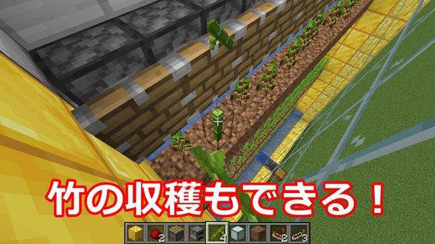 竹の収穫もできる