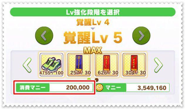 覚醒Lv4⇒覚醒Lv5は20万マニーかかる。
