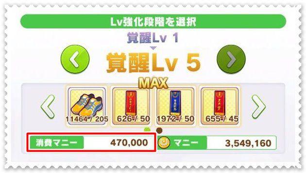覚醒Lv1から覚醒Lv5まで47万マニーかかる。