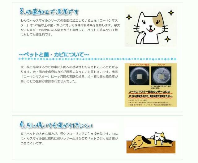 f:id:oroshinoie:20161102172559j:plain