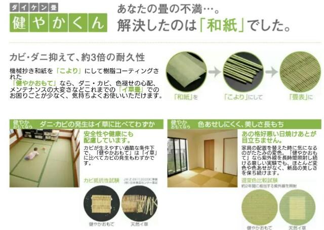 f:id:oroshinoie:20161102173724j:plain