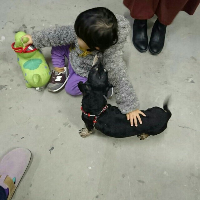 f:id:oroshinoie:20170130015404j:image