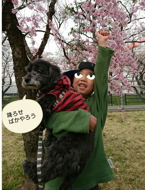 f:id:oroshinoie:20170407033033j:image